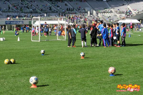 140813ジュニアサッカーフェスティバル
