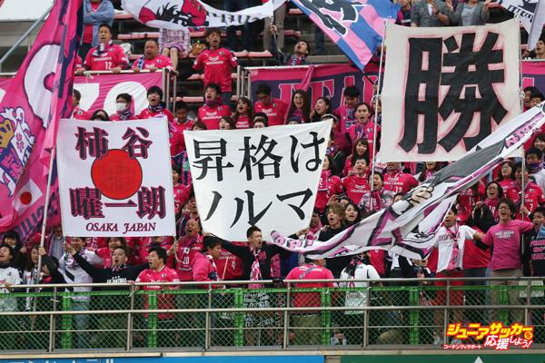 Shimizu S-Pulse v Cerezo Osaka - J.League 2