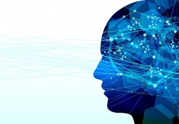 認知 脳 視野