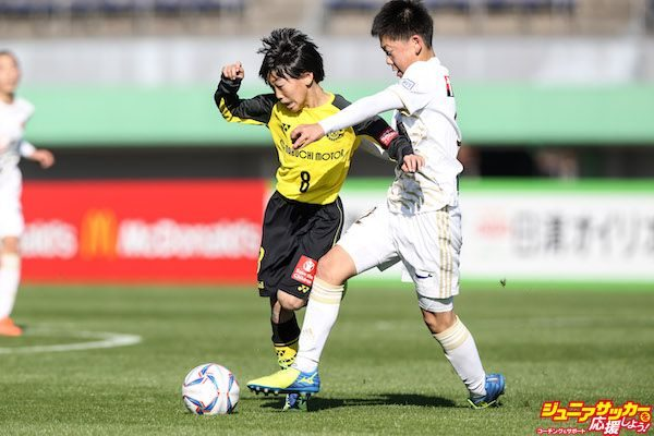 image_preview-4